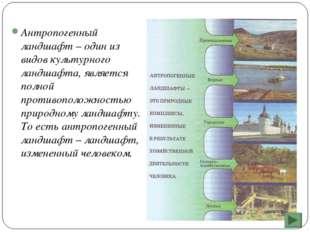 Антропогенный ландшафт – один из видов культурного ландшафта, является полной