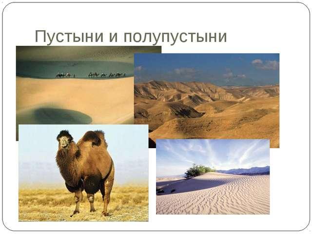 Пустыни и полупустыни
