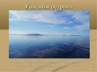 Ушканьи острова В северной части Байкала, против полуострова Святого Носа выс