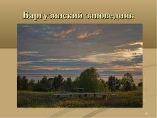 Баргузинский заповедник *