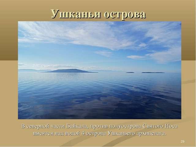 Ушканьи острова В северной части Байкала, против полуострова Святого Носа выс...