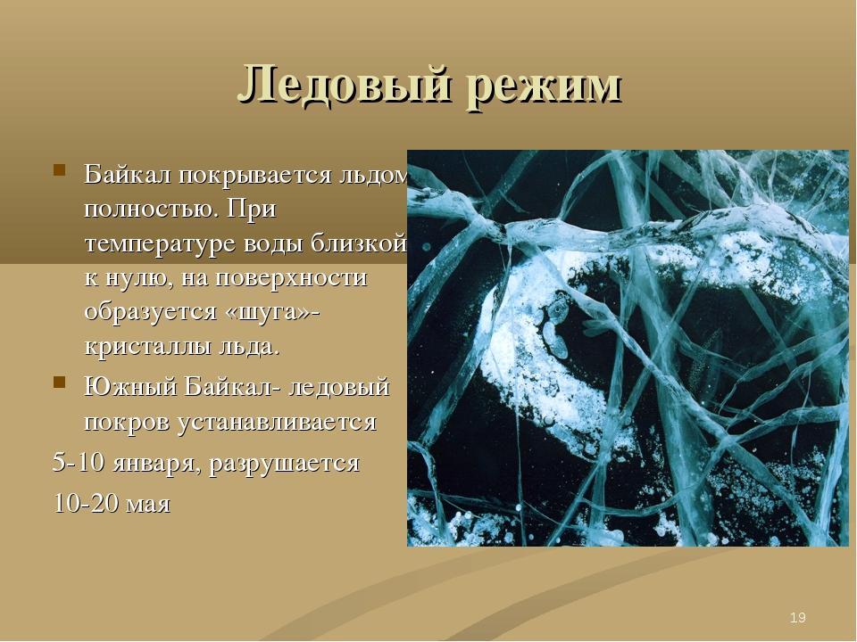 Ледовый режим Байкал покрывается льдом полностью. При температуре воды близко...