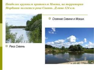 Наиболее крупным притоком Мокши, на территории Мордовии является река Сивинь.
