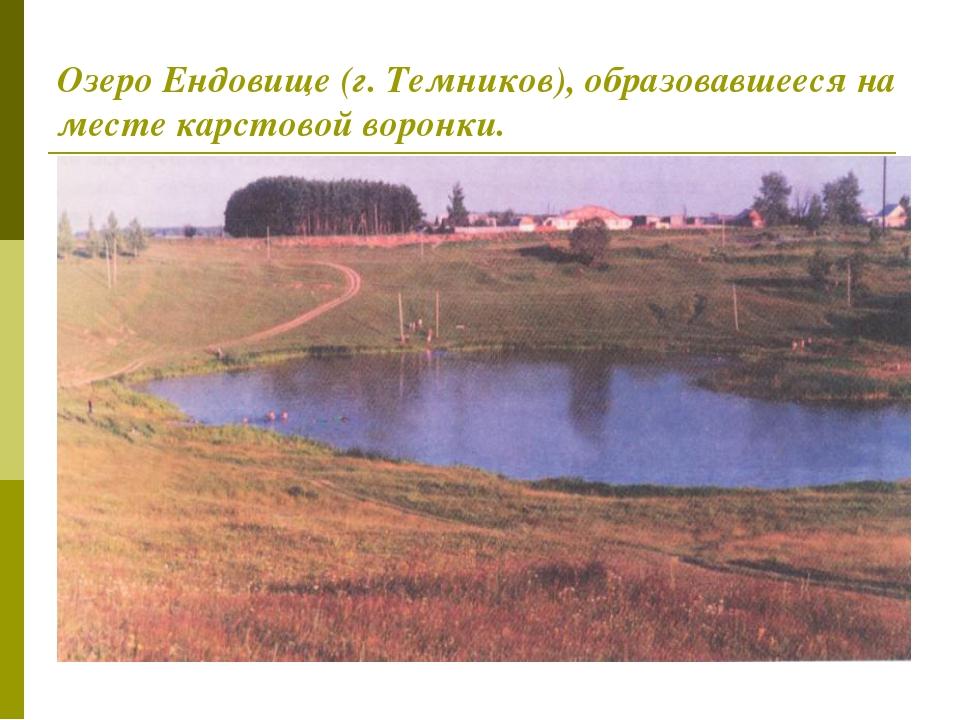 Озеро Ендовище (г. Темников), образовавшееся на месте карстовой воронки.
