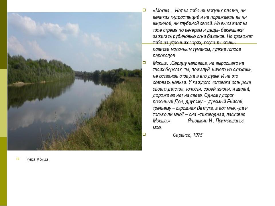 Река Мокша. «Мокша… Нет на тебе ни могучих плотин, ни великих гидростанций и...