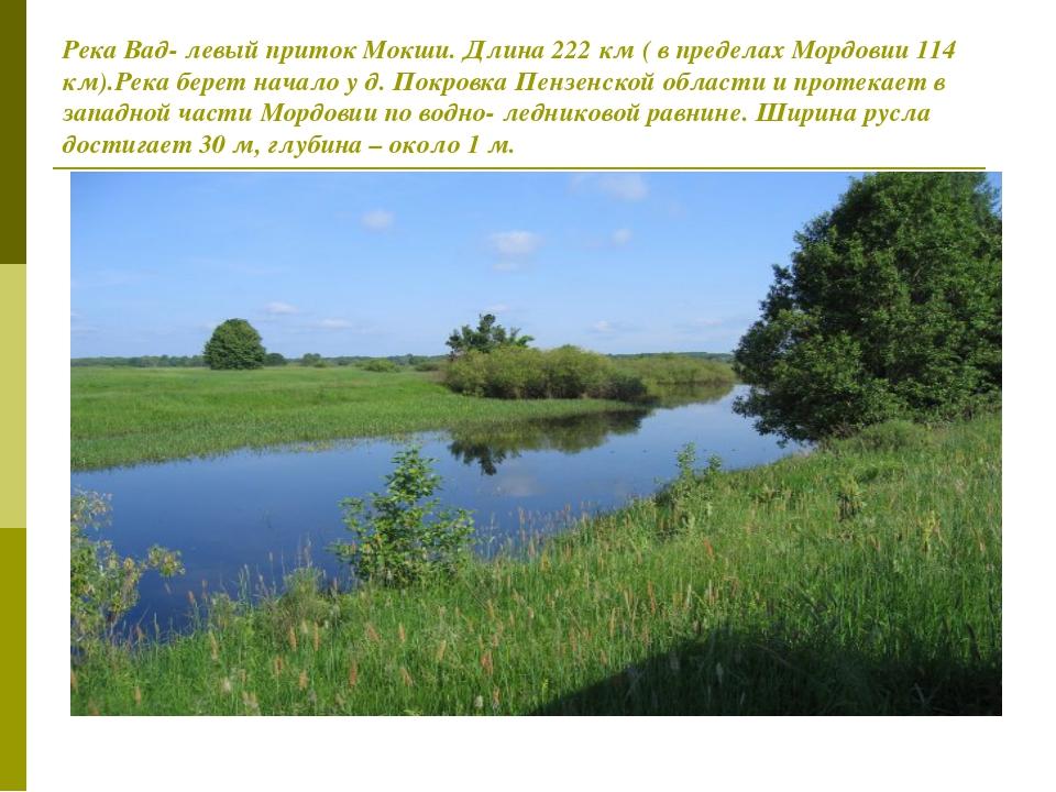 Река Вад- левый приток Мокши. Длина 222 км ( в пределах Мордовии 114 км).Река...