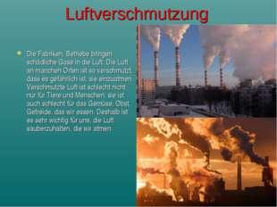 Luftverschmutzung Die Fabriken, Betriebe bringen schädliche Gase in die Luft.