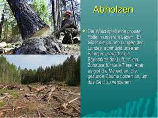 Abholzen Der Wald spielt eine grosse Rolle in unserem Leben. Er bildet die gr