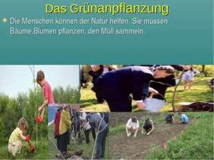 Das Grünanpflanzung Die Menschen können der Natur helfen. Sie müssen Bäume,Bl