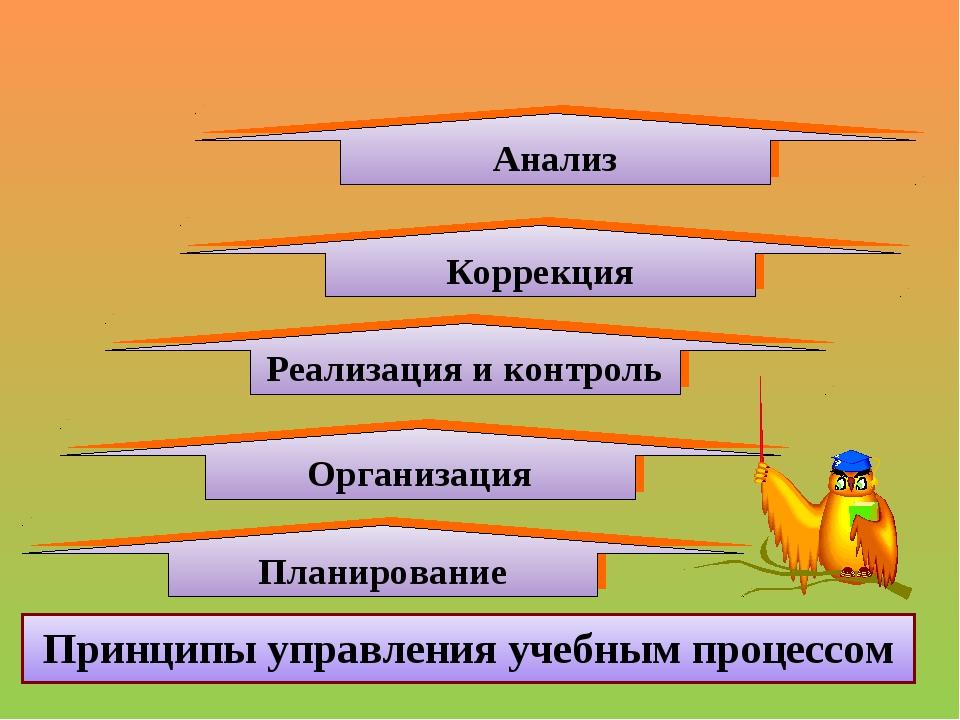 Организация Принципы управления учебным процессом Реализация и контроль Плани...