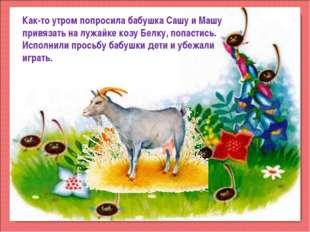 Как-то утром попросила бабушка Сашу и Машу привязать на лужайке козу Белку, п