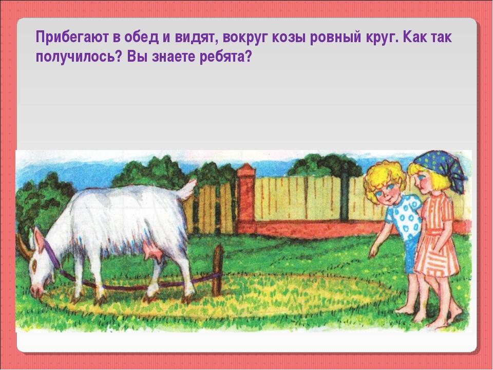 Прибегают в обед и видят, вокруг козы ровный круг. Как так получилось? Вы зна...
