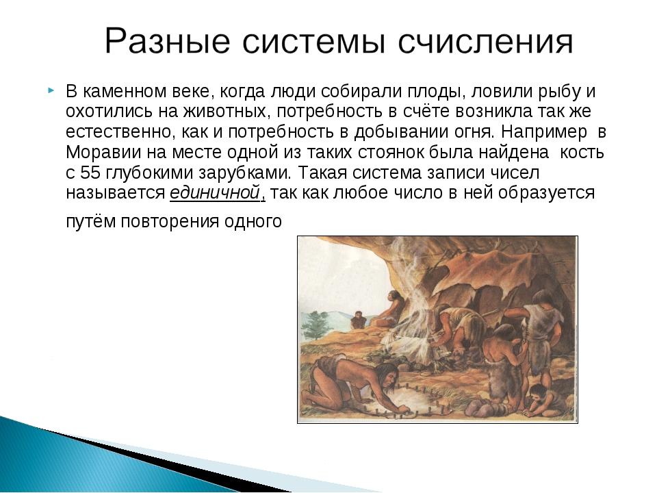 В каменном веке, когда люди собирали плоды, ловили рыбу и охотились на животн...