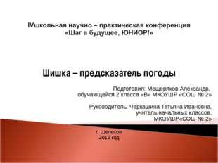 Шишка – предсказатель погоды   Подготовил: Мещеряков Александр, обучающейс