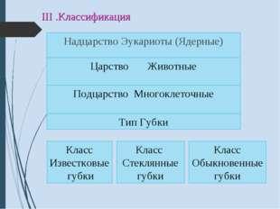 III .Классификация Надцарство Эукариоты (Ядерные) Царство Животные Подцарство