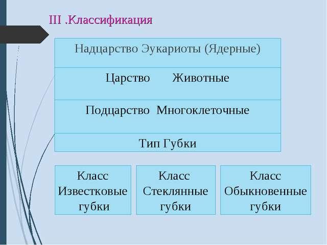 III .Классификация Надцарство Эукариоты (Ядерные) Царство Животные Подцарство...