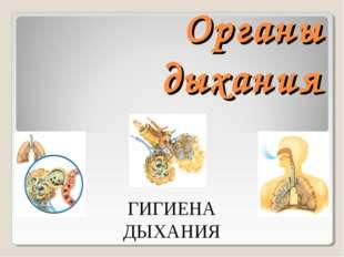Органы дыхания ГИГИЕНА ДЫХАНИЯ