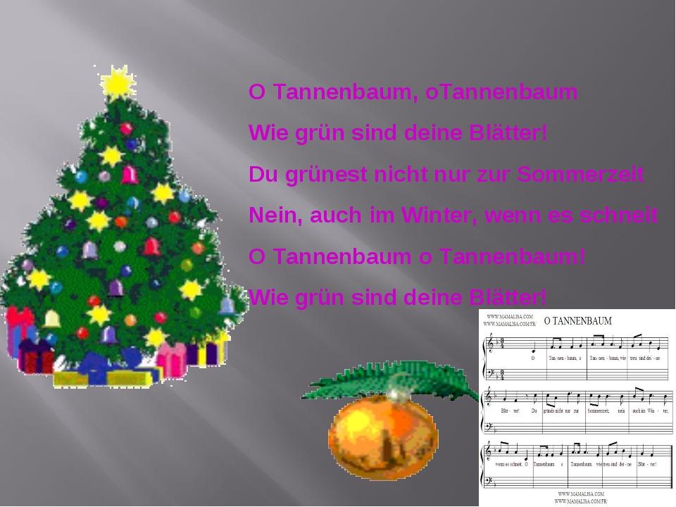 O Tannenbaum, oTannenbaum Wie grün sind deine Blätter! Du grünest nicht nur z...