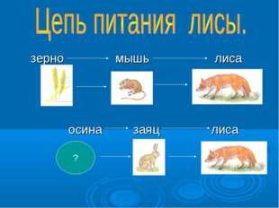 зерно мышь лиса осина заяц лиса ?