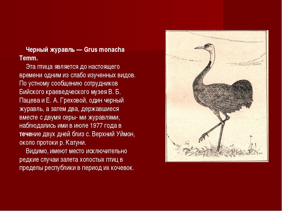 Черный журавль — Grus monacha Temm. Эта птица является до настоящего времени...