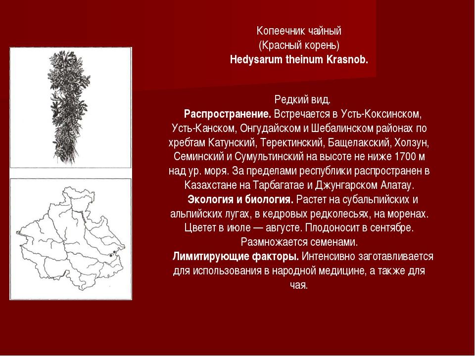 Редкий вид. Распространение. Встречается в Усть-Коксинском, Усть-Канском, Онг...