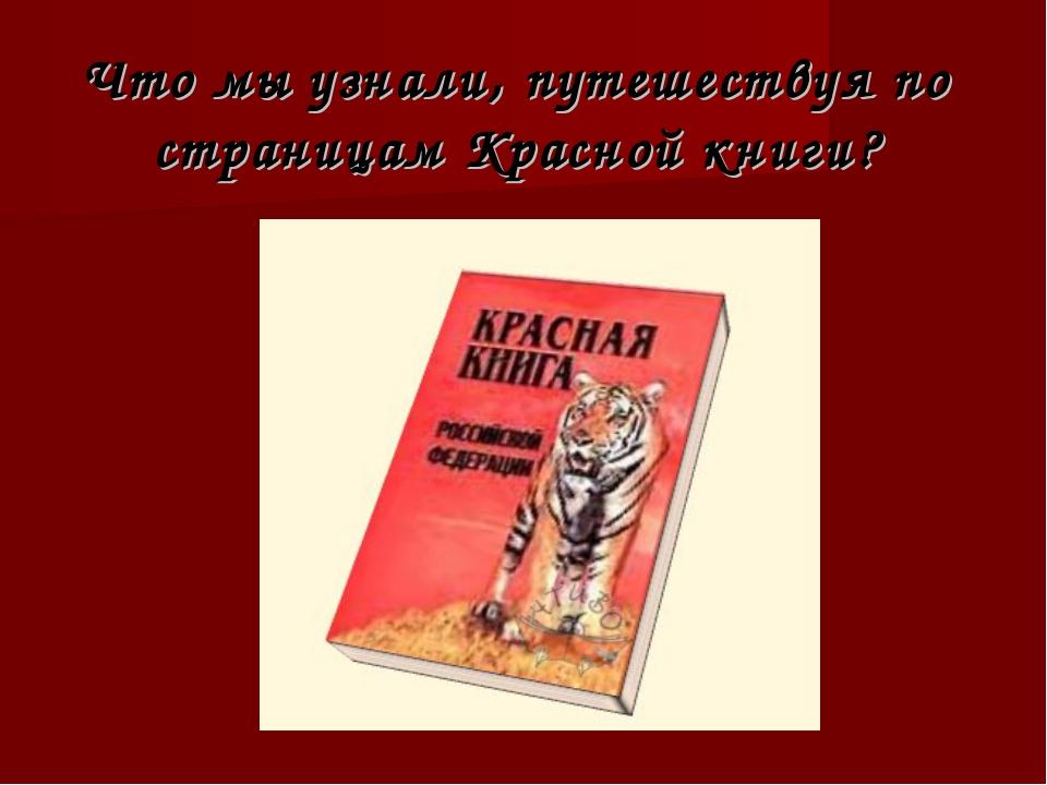 Что мы узнали, путешествуя по страницам Красной книги?