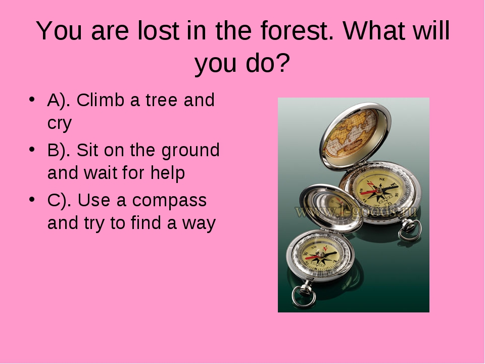 You are lost in the forest. What will you do? A). Climb a tree and cry B). Si...