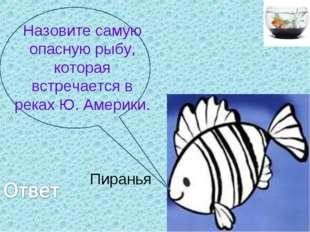 Назовите самую опасную рыбу, которая встречается в реках Ю. Америки. Пиранья