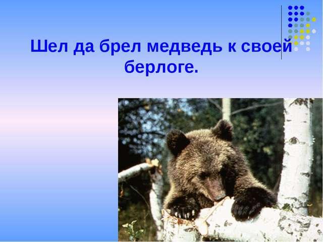 Шел да брел медведь к своей берлоге.
