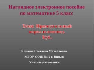Комаева Светлана Михайловна МБОУ СОШ №10 г. Вязьма Учитель математики Наглядн