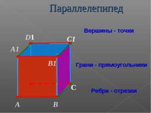 А В С D1 С1 Вершины - точки Грани - прямоугольники Ребра - отрезки А1 D В1 Па