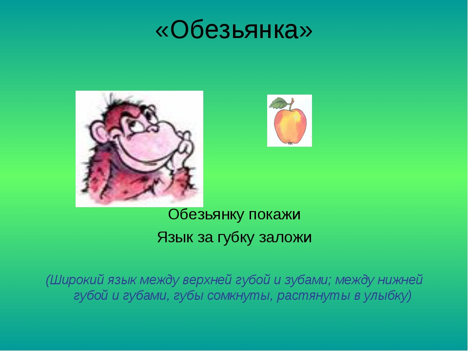 «Обезьянка» Обезьянку покажи Язык за губку заложи (Широкий язык между верхней...