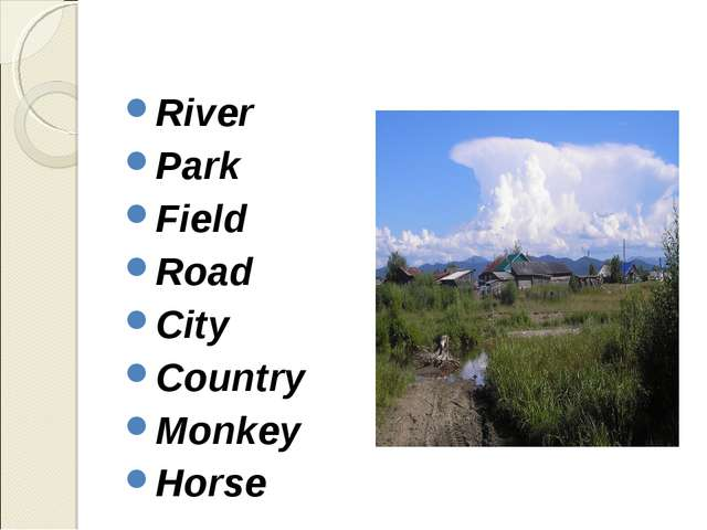 River Park Field Road City Country Monkey Horse