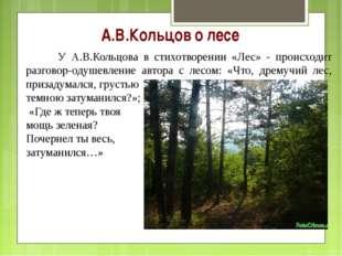 А.В.Кольцов о лесе У А.В.Кольцова в стихотворении «Лес» - происходит разгово