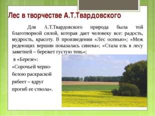 Лес в творчестве А.Т.Твардовского Для А.Т.Твардовского природа была той благ