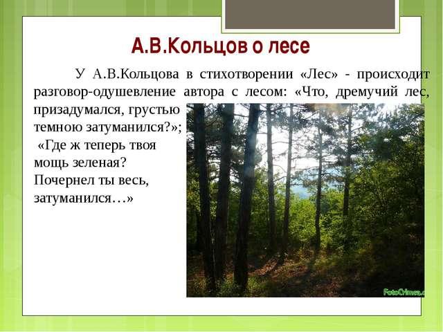 А.В.Кольцов о лесе У А.В.Кольцова в стихотворении «Лес» - происходит разгово...