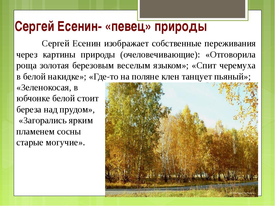 Сергей Есенин- «певец» природы Сергей Есенин изображает собственные пережива...
