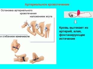 Артериальное кровотечение Кровь вытекает из артерий, алая, фонтанирующее исте