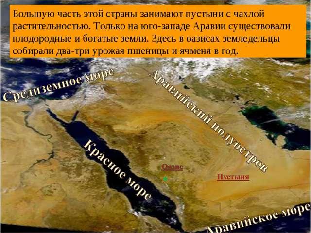 Родина арабов – Аравийский полуостров, или Аравия. Расположен в Юго-Западной...