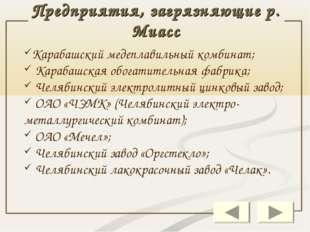 Предприятия, загрязняющие р. Миасс Карабашский медеплавильный комбинат; Караб