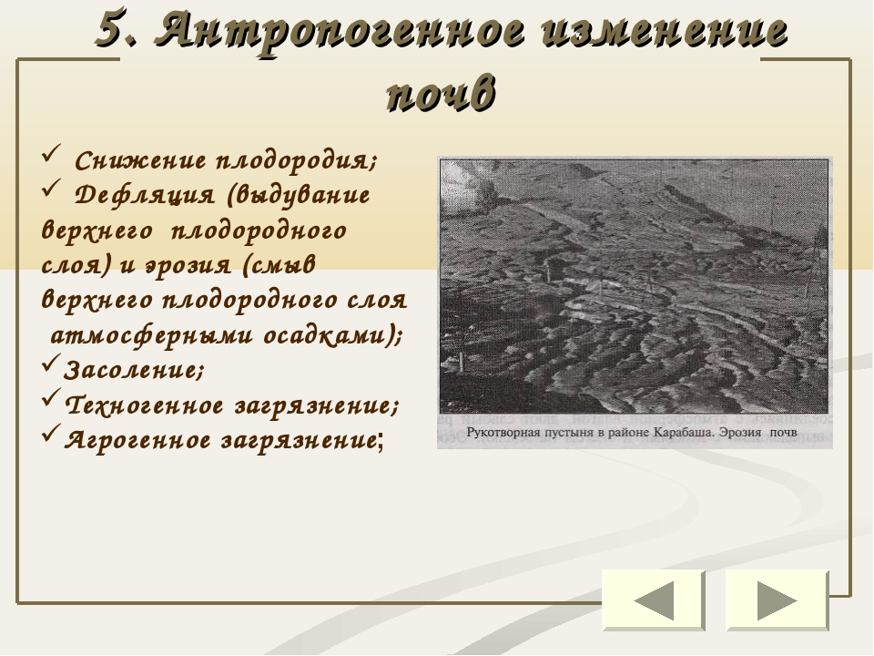 5. Антропогенное изменение почв Снижение плодородия; Дефляция (выдувание верх...