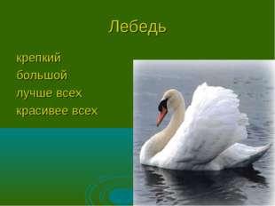 Лебедь крепкий большой лучше всех красивее всех