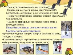 Почему птицы называются перелетные? Почему они улетают в теплые края? (питаю