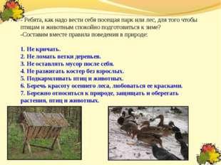 - Ребята, как надо вести себя посещая парк или лес, для того чтобы птицам и