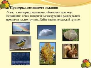II. Проверка домашнего задания -У вас в конвертах картинки с объектами природ