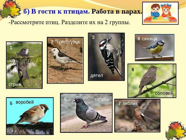 б) В гости к птицам. Работа в парах. 1 2 8 5 6 7 3 4 синица голубь воробей д...
