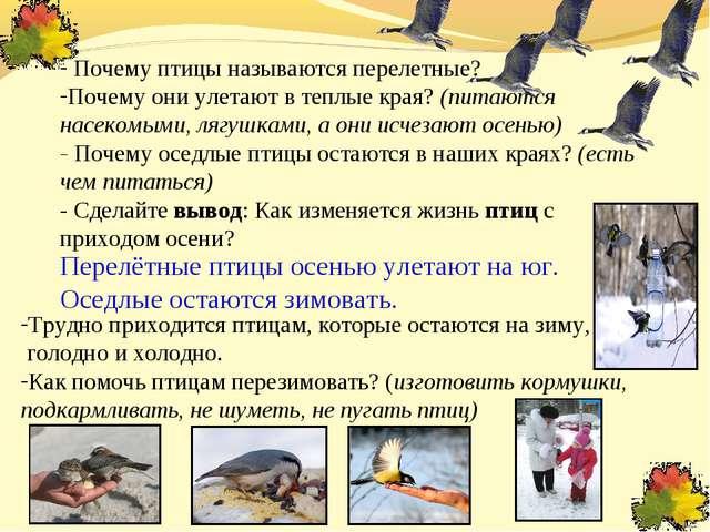 Почему птицы называются перелетные? Почему они улетают в теплые края? (питаю...