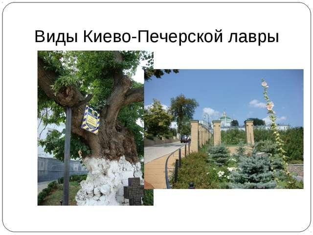 Виды Киево-Печерской лавры