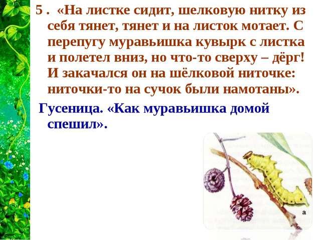 5 . «На листке сидит, шелковую нитку из себя тянет, тянет и на листок мотает....
