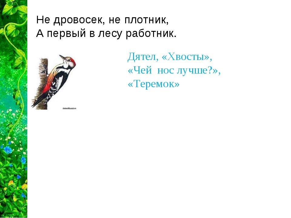 Не дровосек, не плотник, А первый в лесу работник.  Дятел, «Хвосты», «Чей...
